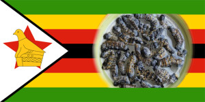 zimbabwean mopane worms recipe