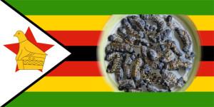 zimbabwean mopane worms recipe